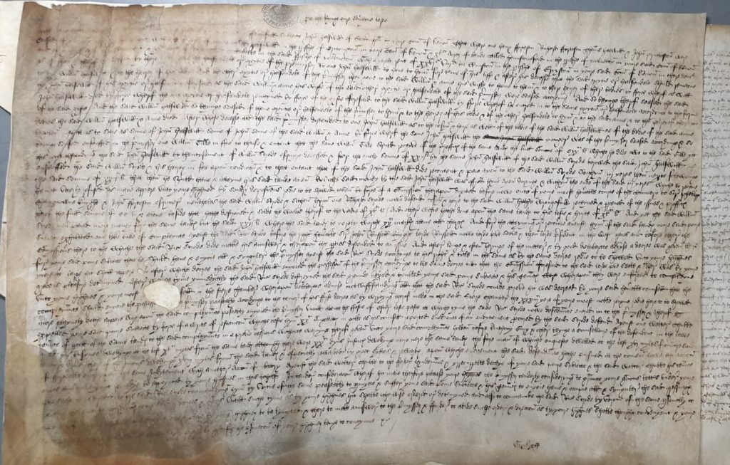 The petition of John Halswell against Richard Strode, submitted to the Court of Requests in the early 1540s (TNA REQ2/4/394)